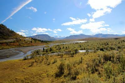 2015年アラスカ Denali N.PとAnchorage④デナリ国立公園3日目 トレイルハイキング