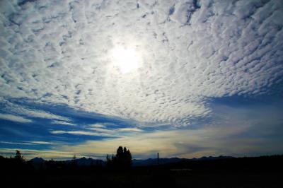 2015年アラスカ Denali N.PとAnchorage⑤アンカレッジへ移動