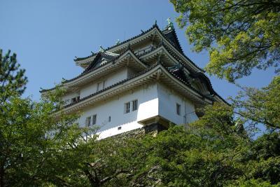 徳川御三家紀州殿の居城、和歌山城は八代将軍徳川吉宗の故郷