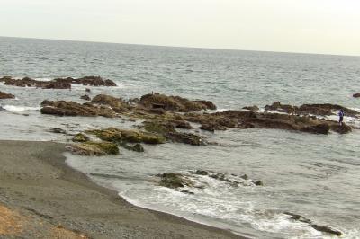 照ヶ崎(アオバト飛来地)と照ヶ崎海岸
