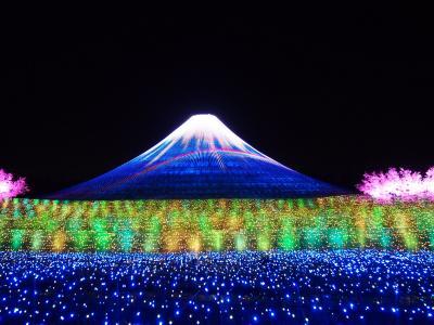 紀伊半島2泊3日ぐるっと一周ドライブ(1) なばなの里ウインターイルミネーション「冬華の競演」 テーマは『祝・世界遺産 富士』