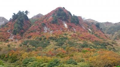 2015  紅葉の雨飾山&戸隠観光 2泊3日
