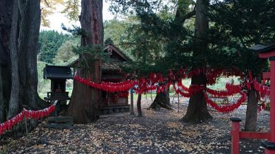 卯子酉様 ~縁結びの赤い布~