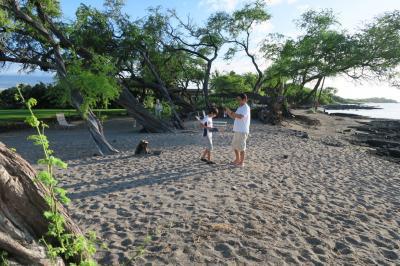 2015. 家族旅行 ハワイ島の続きのオアフ