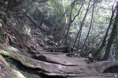 鹿児島から屋久島のゆる~い旅5 白谷雲水峡