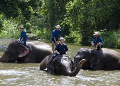 ラオス国境からミャンマー国境、タイ国立ゾウ保護センター