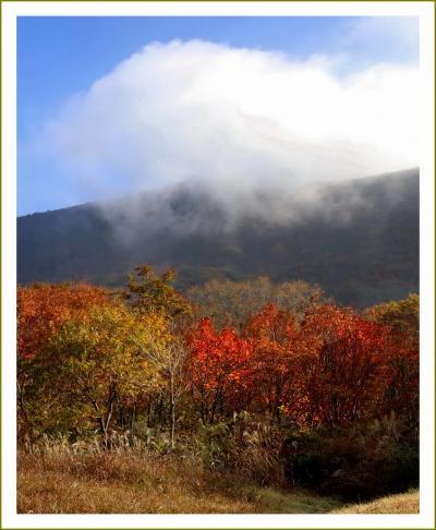 Solitary Journey [秋色特別編]赤や黄に染まった山々が秋の賑いを見せていました♪<比婆道後帝釈国定公園・吾妻山の紅葉>広島県庄原市