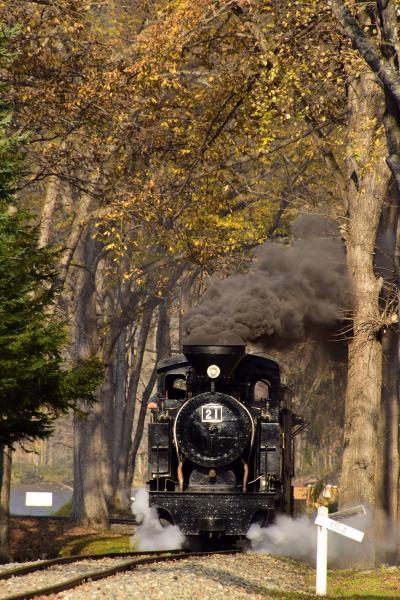 秋の北海道、道東地方を巡る旅 ~紅葉の中を走る北海道遺産森林鉄道「雨宮21号」を見に、丸瀬布いこいの森に訪れてみた~