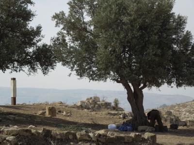 ヨルダン② ゴラン高原にシリアの平和を祈る