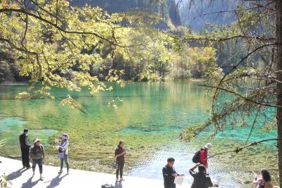 晴天に、黄葉とエメラルドグリーンに輝く神秘の湖沼群、中国・九寨溝で行く秋をいとおしむ。