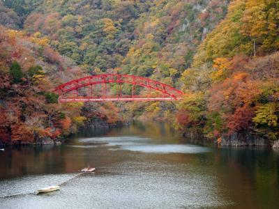 2015 帝釈峡へ紅葉狩りドライブ♪