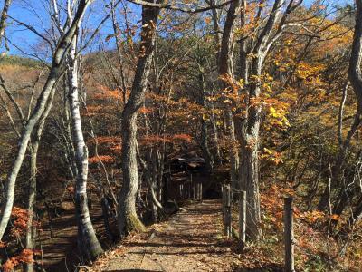 紅葉を求めて…志賀高原から富士山