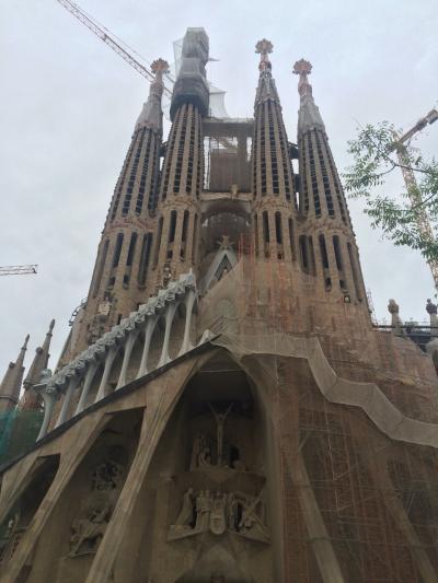 バルセロナ5日目 フランクフルトへ移動。