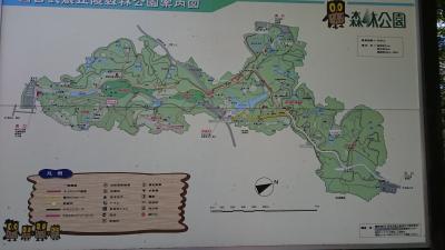 無料開園日なので行ってみた。in埼玉県・森林公園