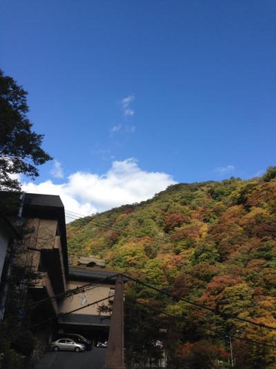 大山登山のあとは、湯原温泉「八景」へ