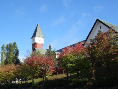 日本一早く紅葉の始まる大雪山へ    ⑤  旭川動物園と雪の美術館