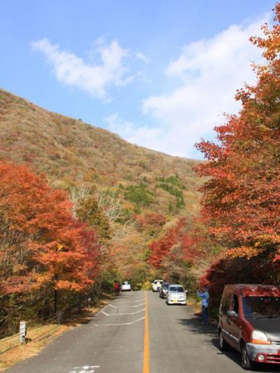 九州紅葉ロード爽快ドライブ