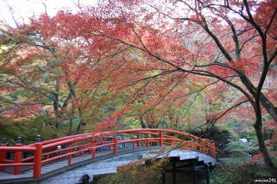 紅葉と温泉の旅(1日目):水澤観世音~伊香保温泉