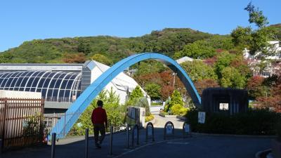 池田城跡公園と五月山動物園とへ行ったら・・・休園日でした。