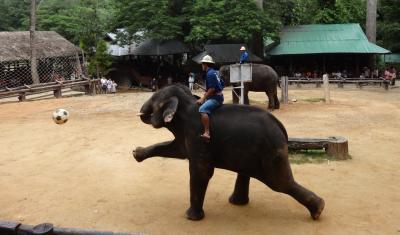 タイのチェンマイ(2015年11月旅行記)