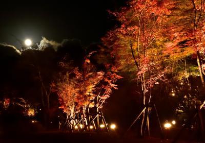 2015年秋 山中湖ロッジ滞在記(1)夕焼けの渚公園紅葉祭り