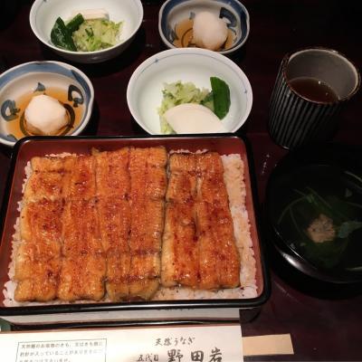 東京タワーの麓で、鰻・5代目野田岩