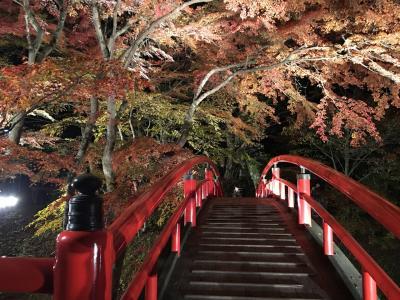 「伊香保温泉 日本の名湯」2015 紅葉河鹿橋 勝手に慰安旅行
