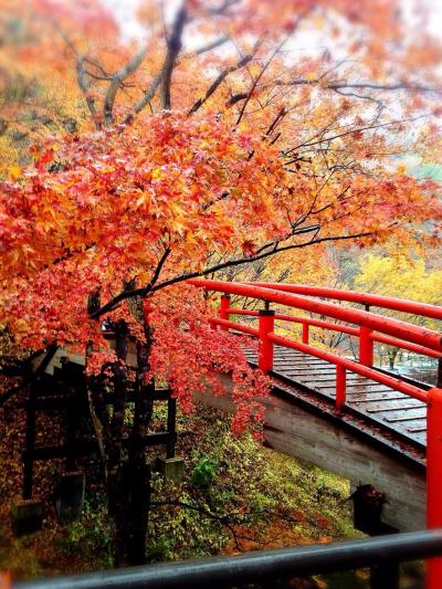 紅葉真っ只中の伊香保温泉と榛名神社~①