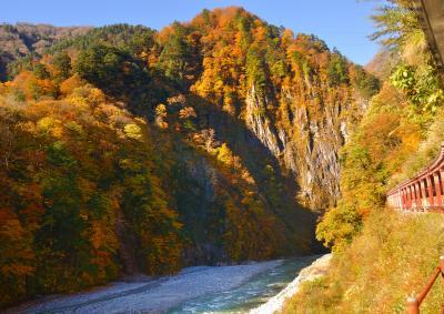紅葉最盛時の黒部渓谷トロッコ列車
