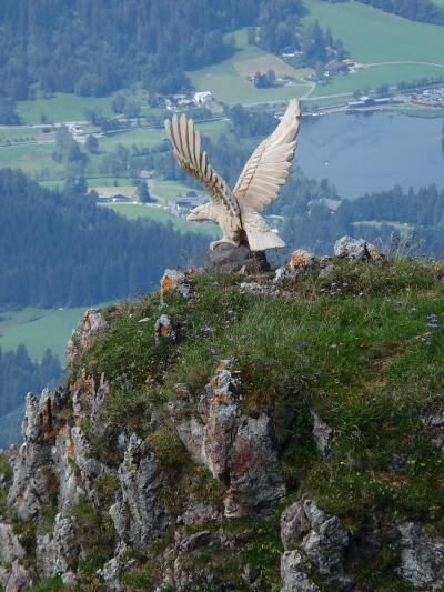 オーストリアのチロル&エーアヴァルト、ドイツのバイエルンの旅 【20】 キッツビューラーホルンで山上ハイキング