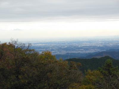高畑不動~関八州見晴台ハイキング