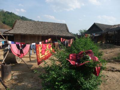 ベトナム北部の少数民族の村巡り(1) ディエンビエンフー、サパ