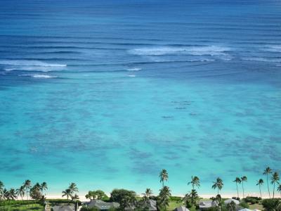 オアフ島滞在とハワイ島マウナケア山 vol.8