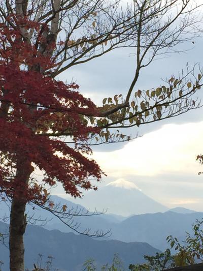 高尾山から富士山見えた