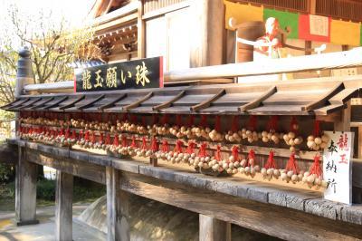 旅するイルカ♪ 紅葉狩り 奈良県いろいろ巡りへ