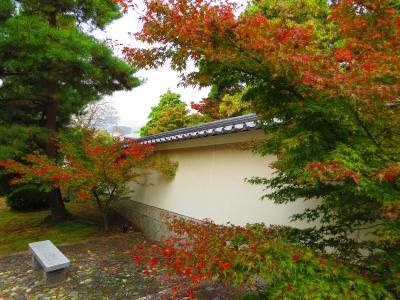 京都の紅葉も見ごろ、東山周辺をブラブラして来ました