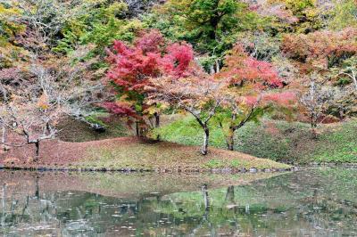 紅葉の用作公園から雨の長湯と由布院