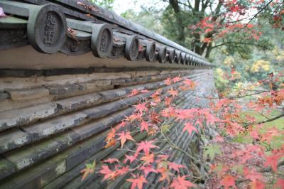 国宝のある虎渓山永保寺の紅葉