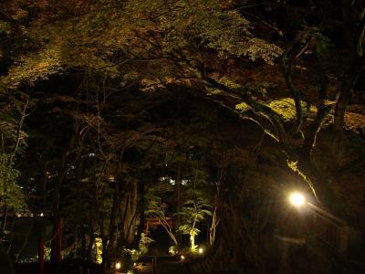 【紅葉を求めて:2015】 談山神社のライトアップ