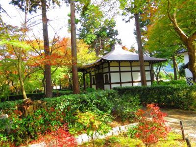 京都の紅葉も見ごろ、東山周辺をブラブラして来ました「続編」