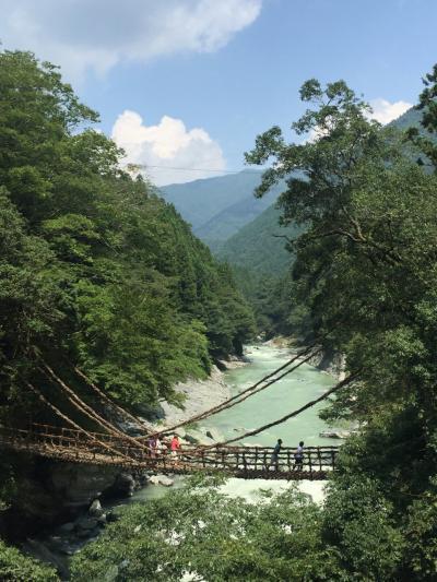 おいしいものいっぱい 電車とバスで四国ぐるり一周ツアー その3(高知市内~祖谷のかずら橋~香川)