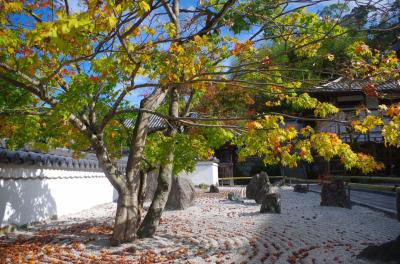 福岡県太宰府市 光明禅寺と竈門神社の秋(2015年11月)