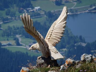 オーストリアのチロル&エーアヴァルト、ドイツのバイエルンの旅 【25】 しつこいけど^^;キッツビューラーホルンから再び高山植物園を通って