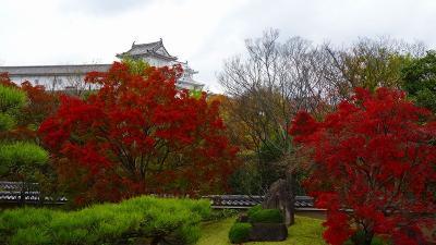 姫路城西御屋敷跡庭園 好古園の紅葉 下巻