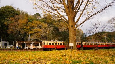●ジャムロールと小湊鉄道沿線