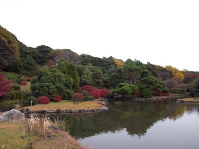 東京十社めぐり⑦白山神社~晩秋の小石川植物園