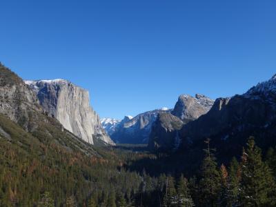 2015 サンフランシスコから行くヨセミテ国立公園日帰りツアー