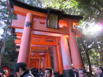 京都旅行(伏見稲荷~東山へ)