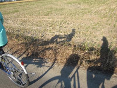自転車で琵琶湖一周2泊3日