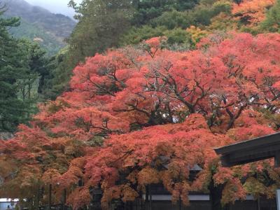 ★雷山の紅葉